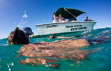 Private Adventure & Snorkel Cruise