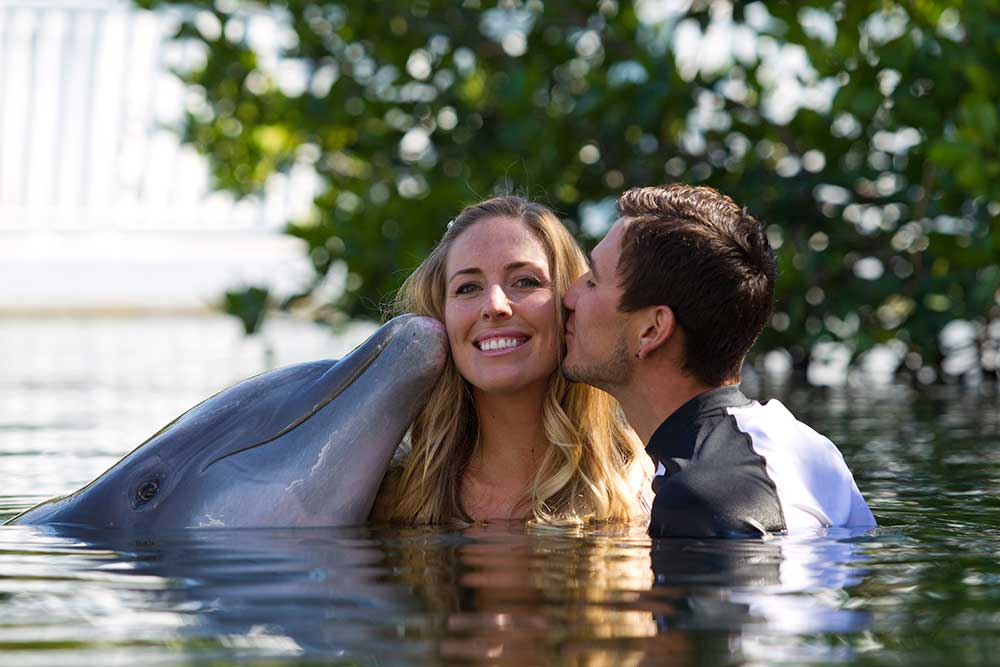 Dolphin Wedding Escape Package